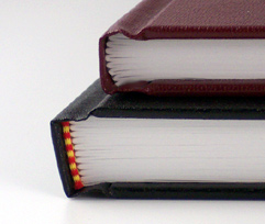detail of two types of section sewn casebound books